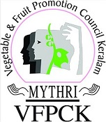 Vfpck logo